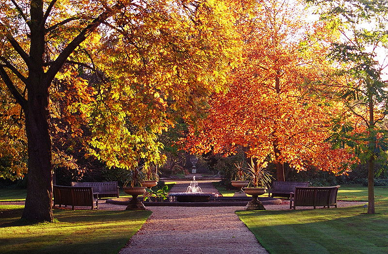 Jardim Botânico da Universidade de Oxford, no outono